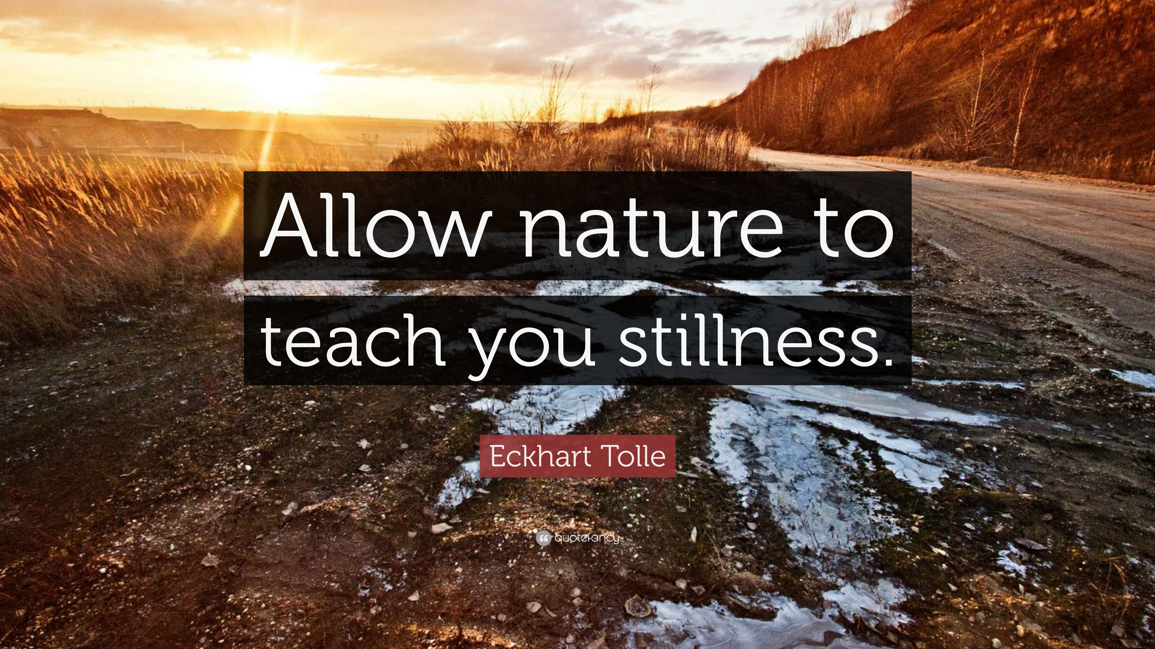 140203-Eckhart-Tolle-Quote-Allow-nature-to-teach-you-stillness