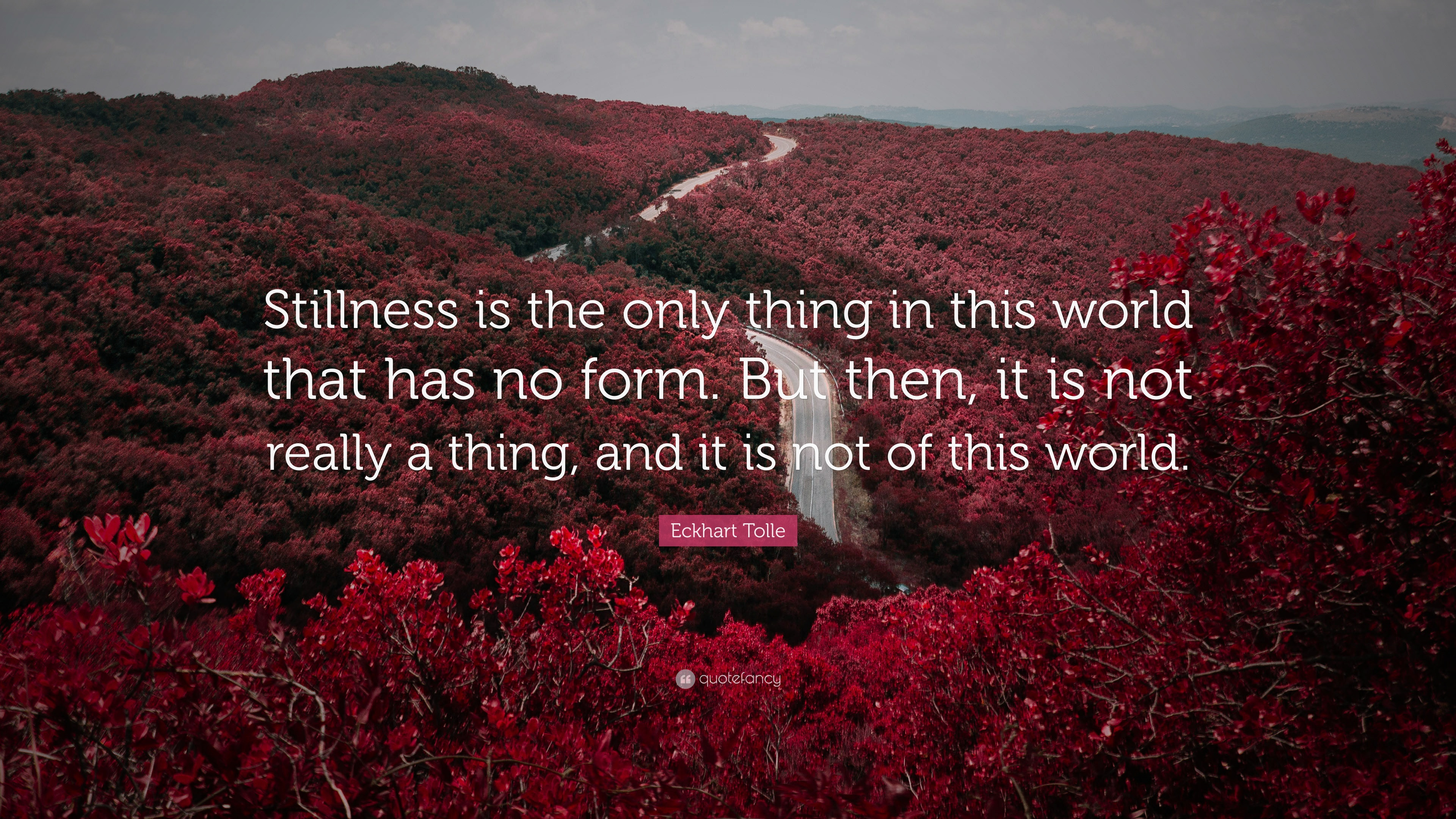 140944-Eckhart-Tolle-Quote-Stillness-is-the-only-thing-in-this-world-that