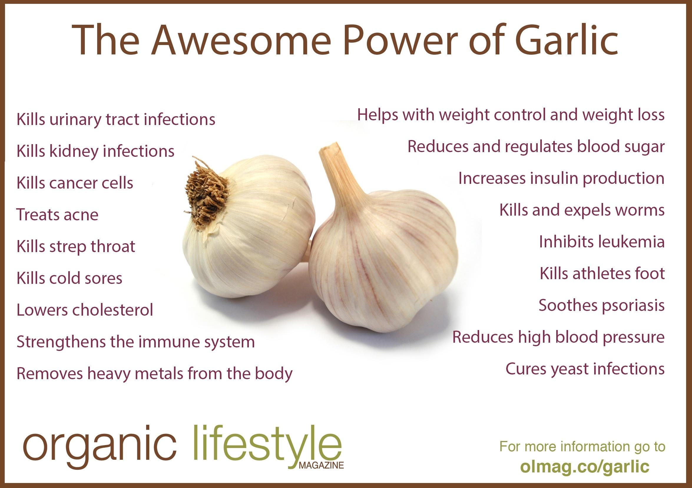 garlic-infographic